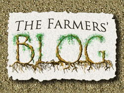 Blog link for A Place on Earth CSA Farm